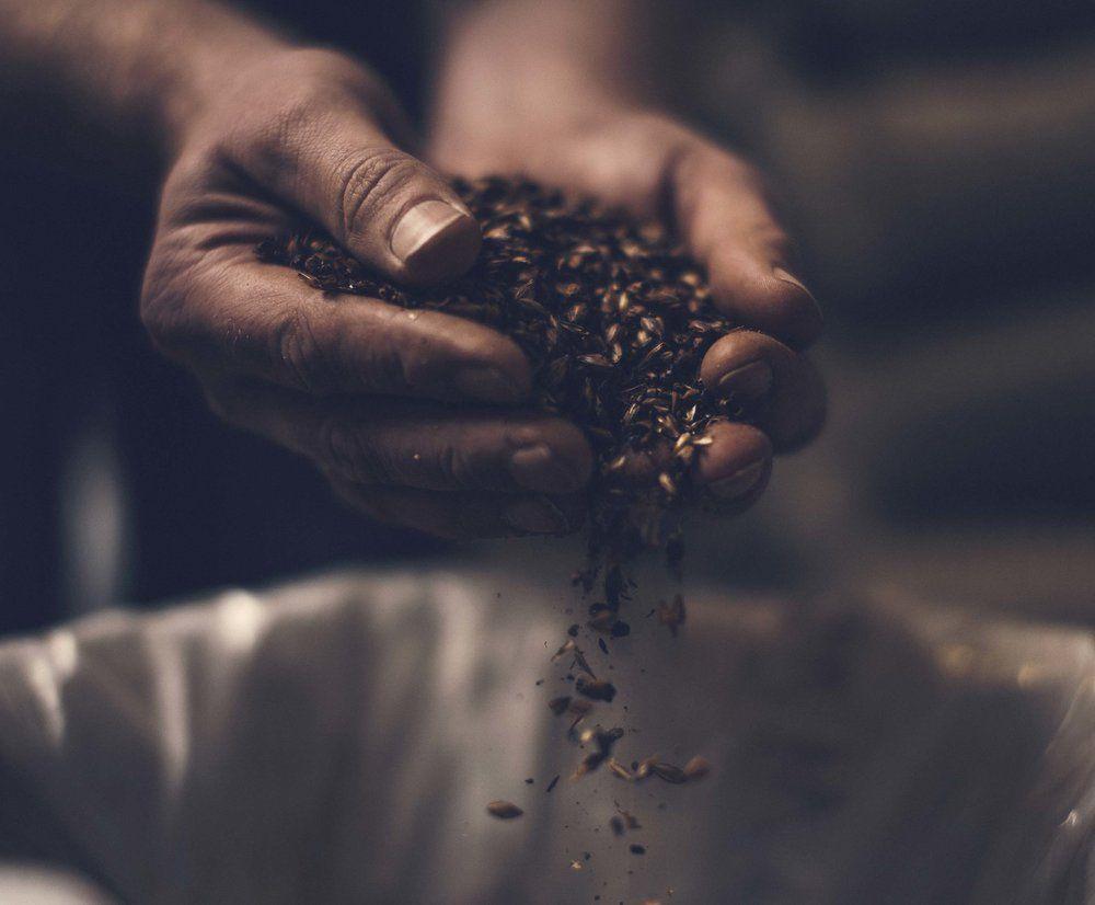 beerbros-grain.jpg