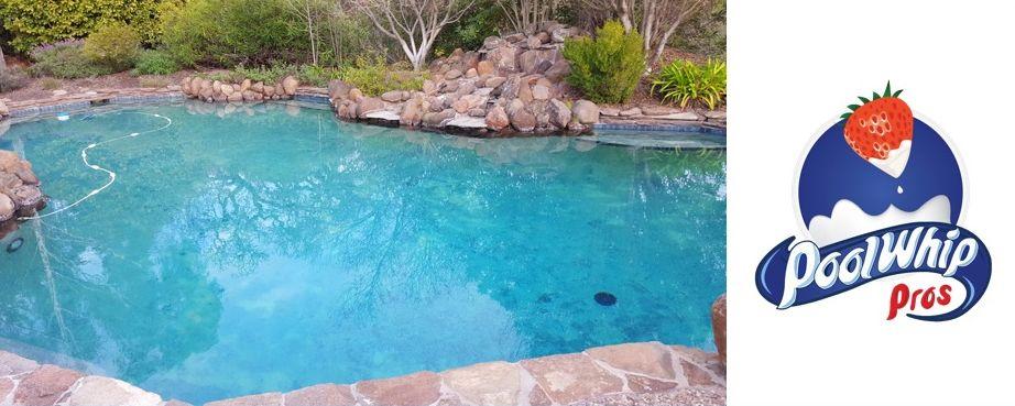 Pool Whip Pros