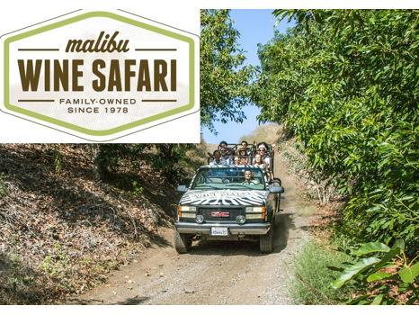 Malibu Safari for Two!