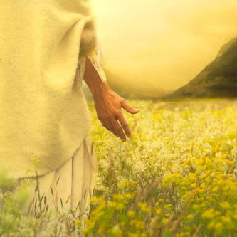 Jesus walking through a field of lilies with his hand outstretched.