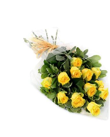 hf Mellow Yellow