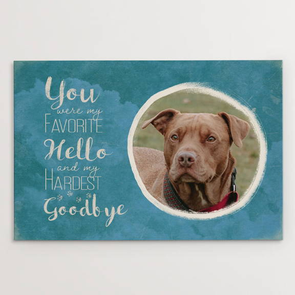 You Were My Favorite Hello and My Hardest Goodbye, Memorial, pitbull