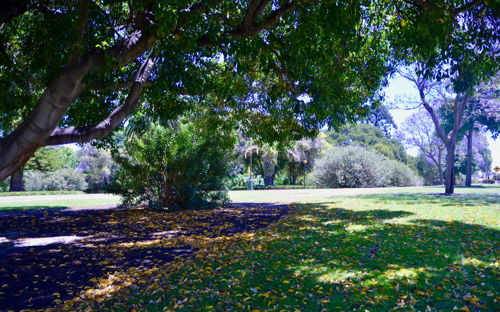 Hyde Park (HP 2) - 0