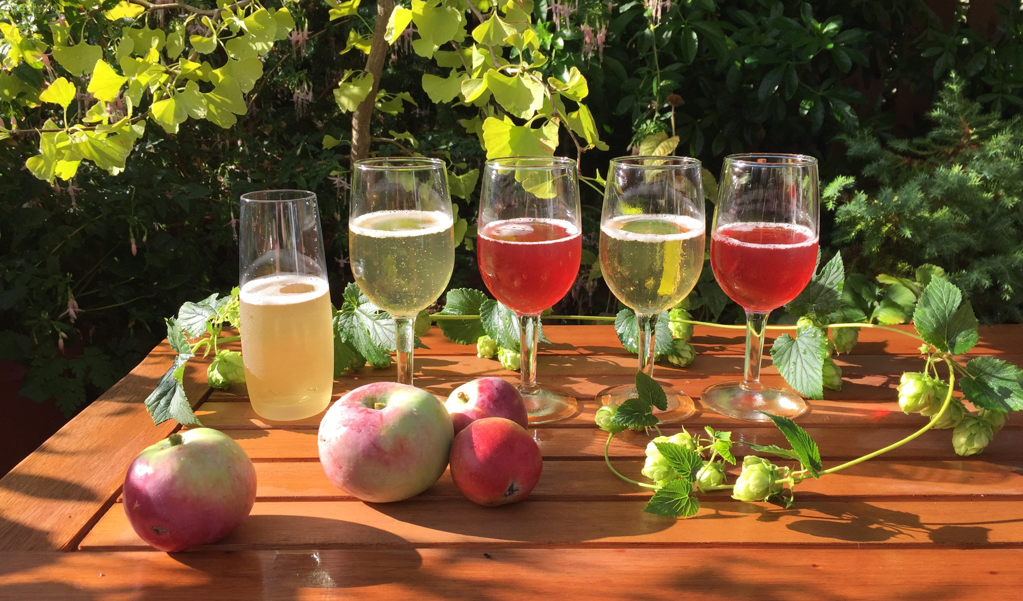 Orchard images including fig, hops and apples