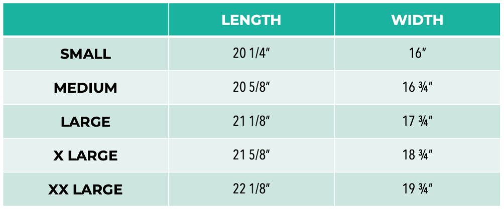 muscle tee size chart