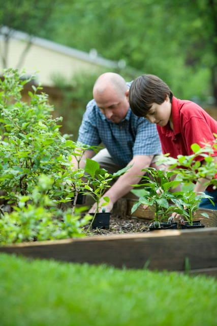photo d'un jardinage en famille