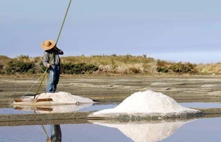 Why You Should Be Using Fleur De Sel Instead Of Regular Table Salt