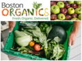 Two Deliveries of Organic Produce from Boston Organics