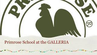 Primrose Galleria