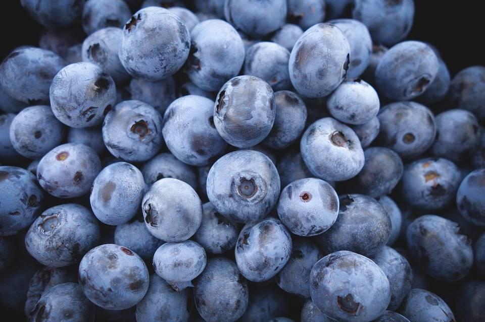 fibrous, Vitamin C- and potassium-filled, organic blueberries