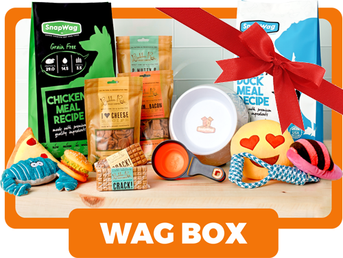 Gift Box For Dog Lovers - Wag Box