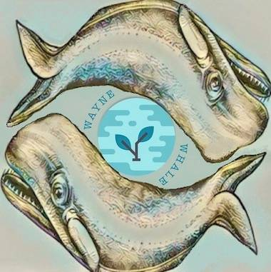 Wayne&Whale Zero Waste Shop Logo
