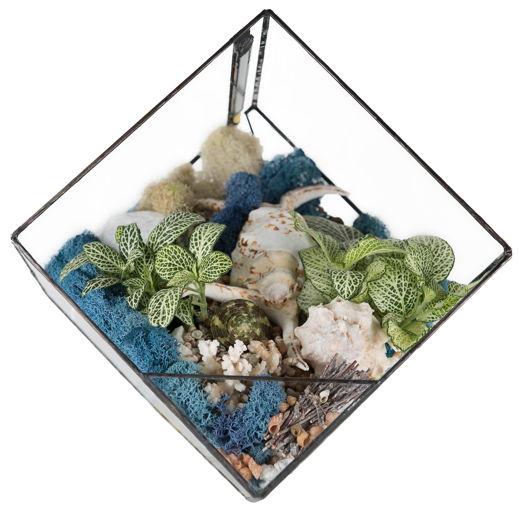 Ночник «LIVING OCEAN BLUE» (Геометрический флорариум с подсветкой)