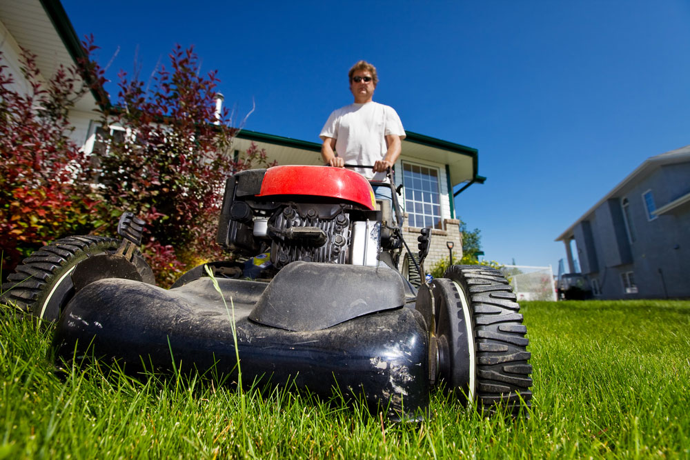 Choosing a Good Lawnmower