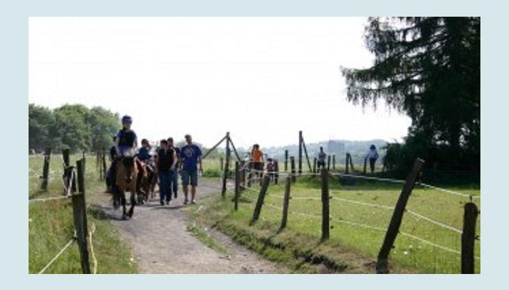 ponnyland reiten auf feldweg