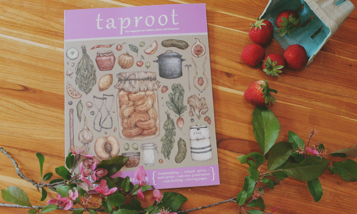 Taproot Magazine Issue 18::PRESERVE
