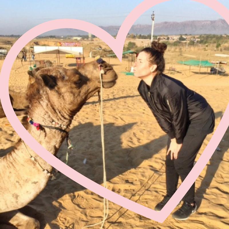 melanie disalvo kissing a camel in pushkar india