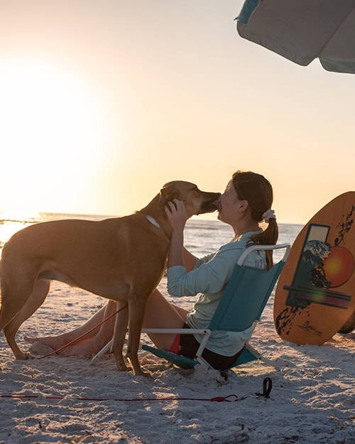 dog kissing owner at the beach tied to the gravity stake by saker