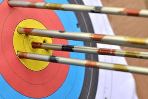 Indoor Archery Beginners session