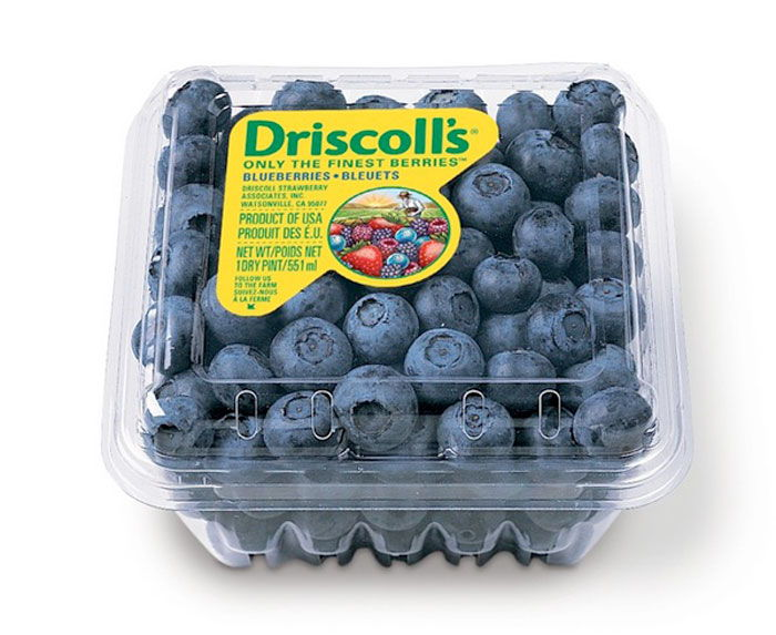 02 15 13 driscolls 9