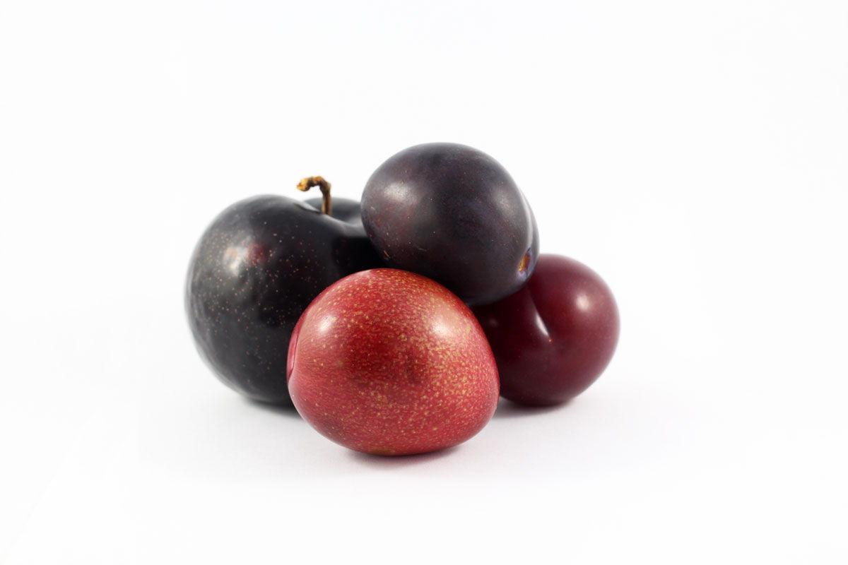 Plums - Souto Farms Fresh BC Fruit