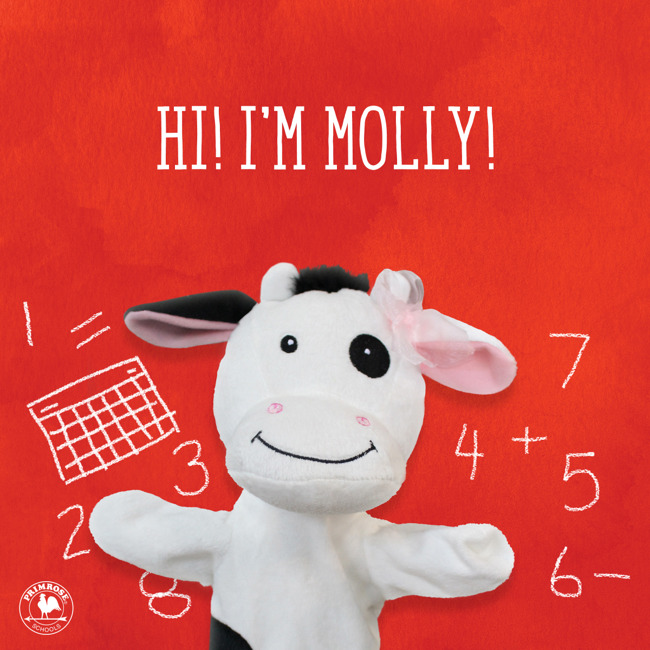 Primrose puppet Molly the cow