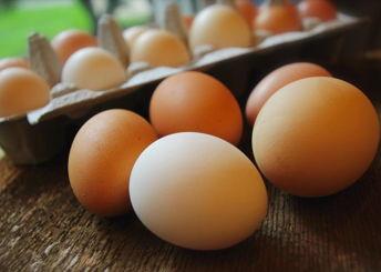 Walker Finest Eggs