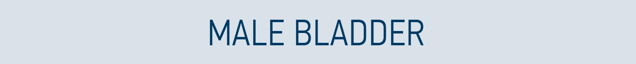 Male bladder health banner