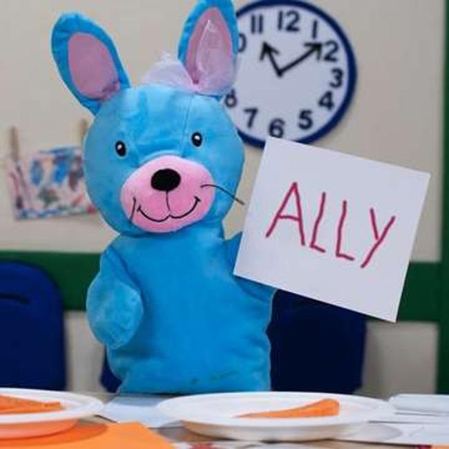ally the bunny
