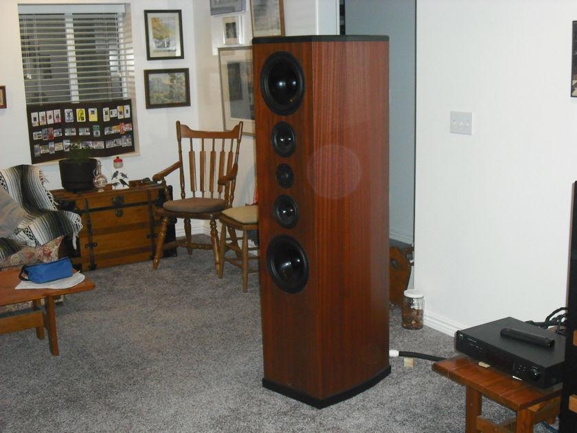 Tyler Acoustics Highland   H 2