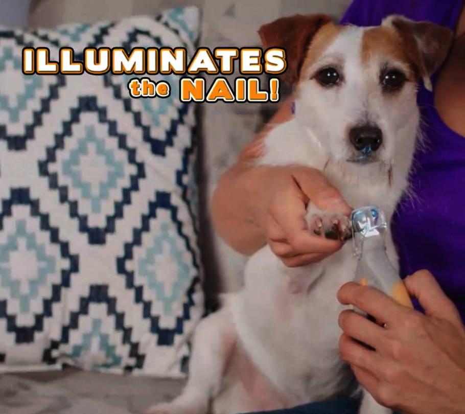 Illuminates The Nail