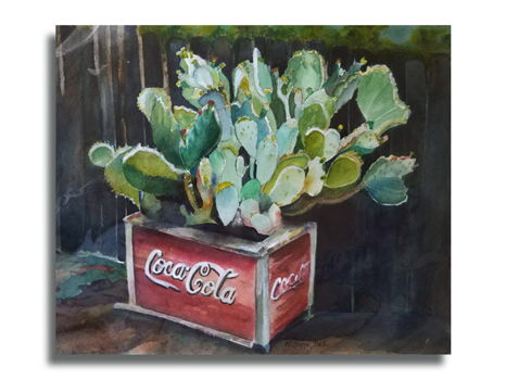 """""""Coca Cola and Cactus"""""""