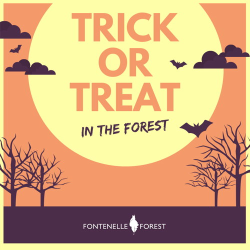 Picture of Join us in the Forest for an afternoon of tricks and treats!