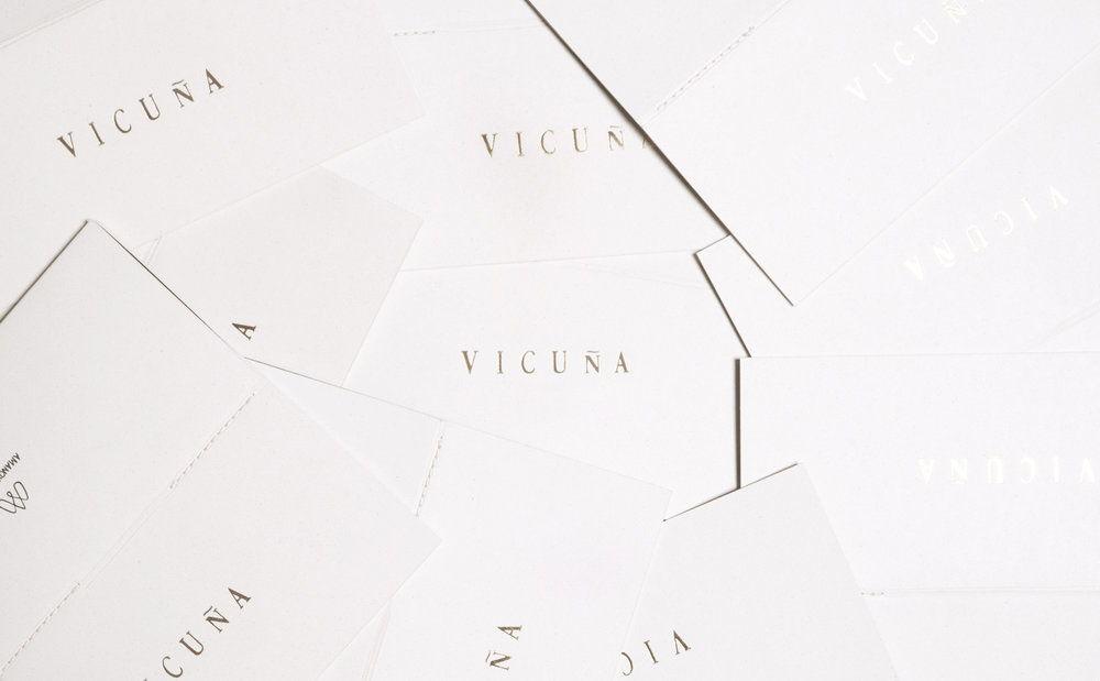 Vicuña_1.jpg