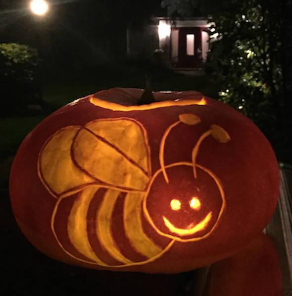 Halloweenkürbis mit Biene