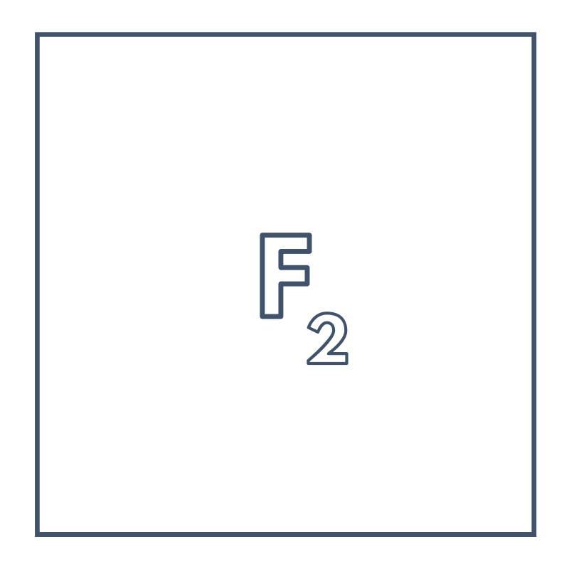 Fluorine Gas F2