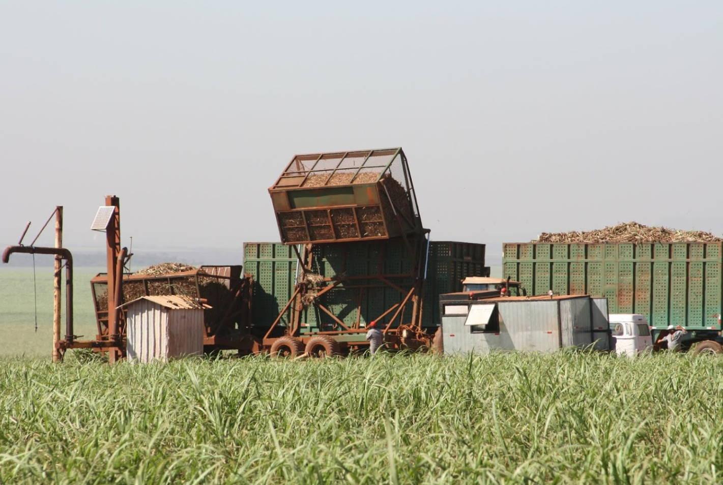 BALMTA Ethanol, Ethanol Production
