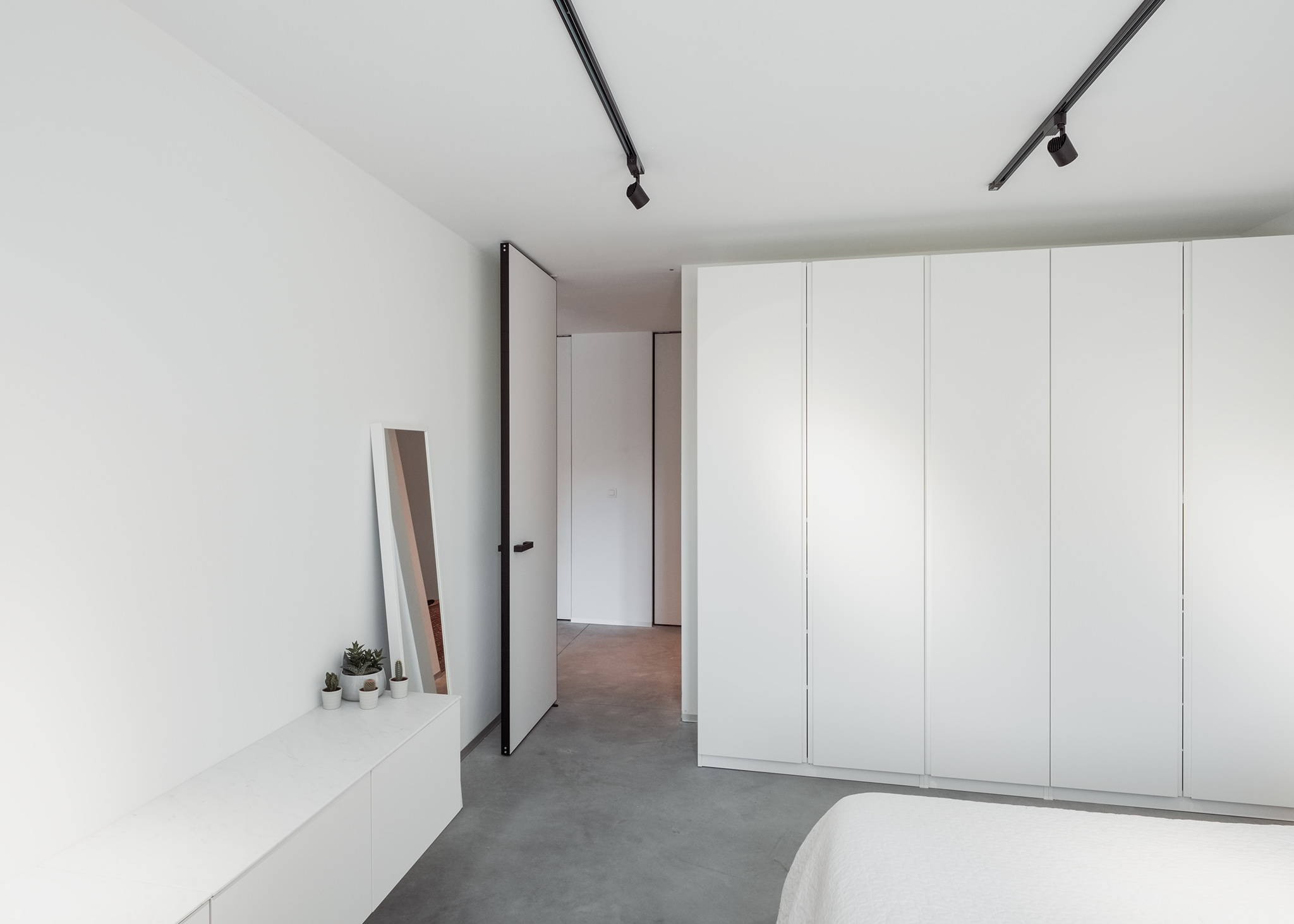 modern interior pivot door