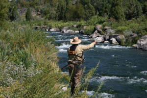 Fly Fishing Trip 8 Hours