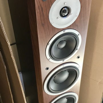 Focus 340  (Walnut Pair)