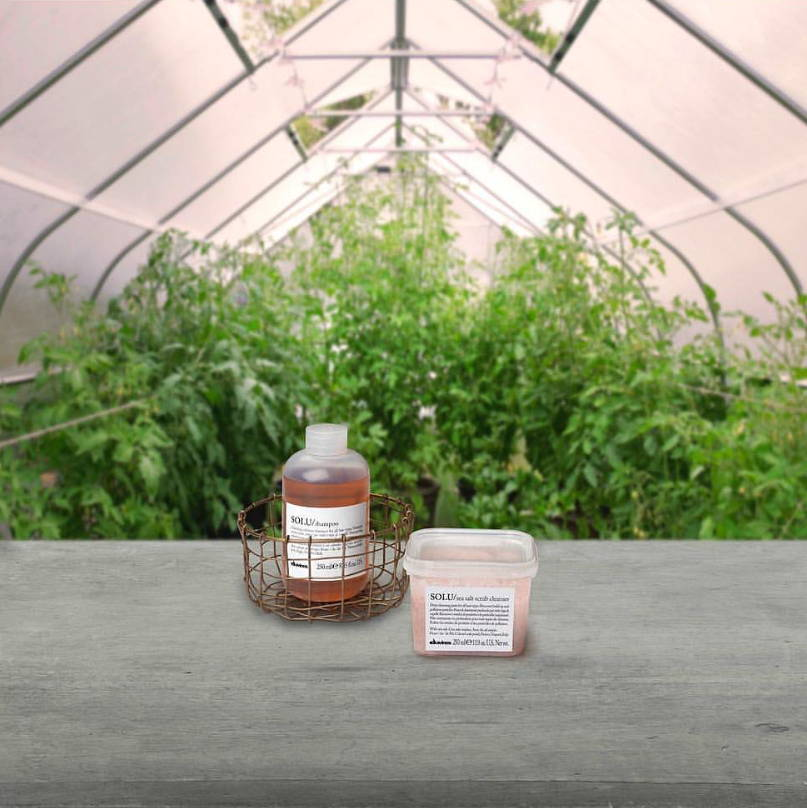 Davines products with greenery in the background