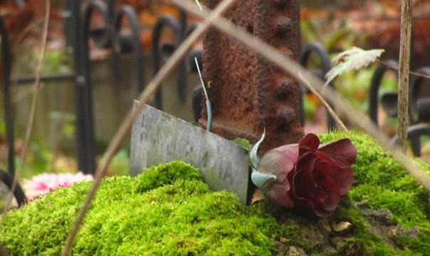 Тайны и чудеса Смоленского кладбища