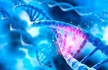 Gene Testing Does More Harm Than Good, What You Need to Know - auto