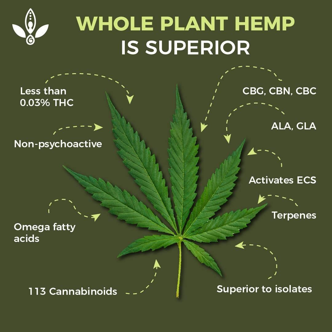 buy marijuana oil legally