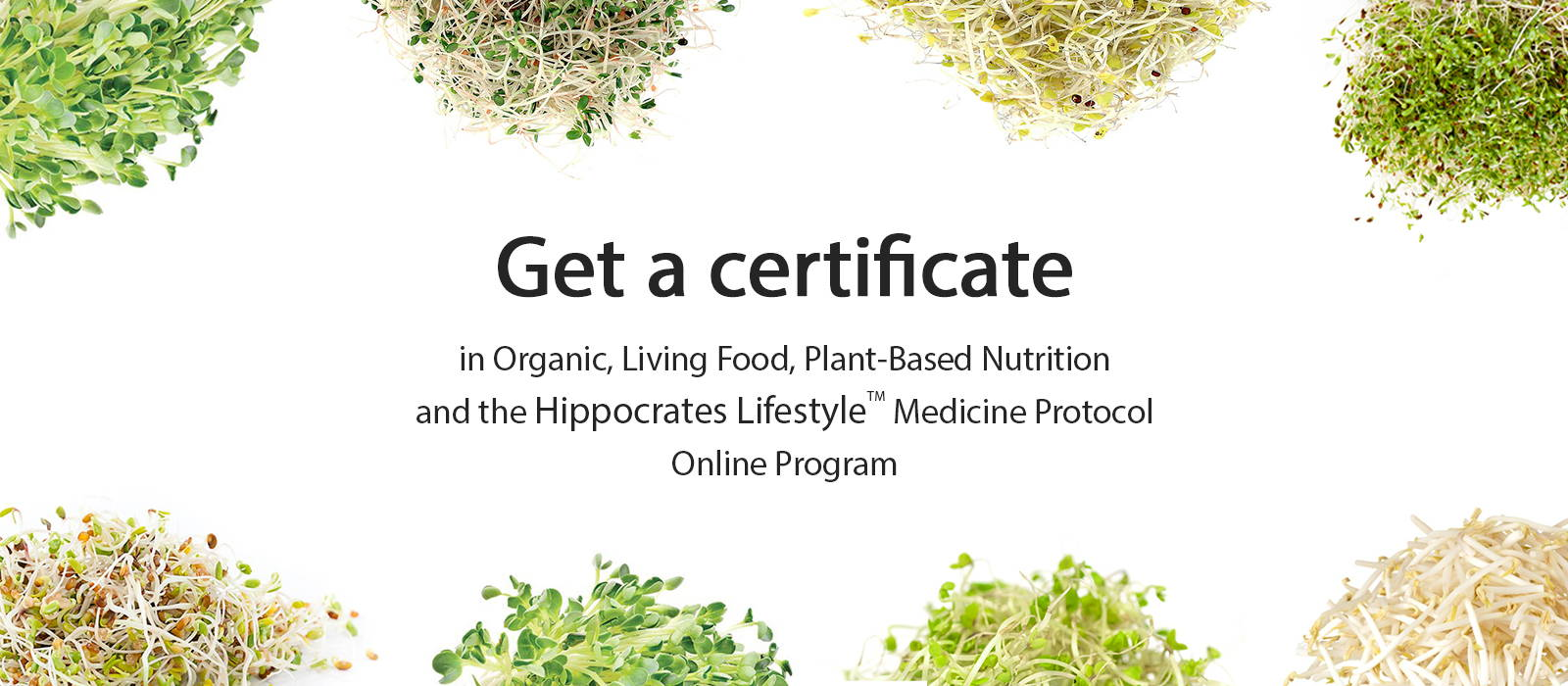 Hippocrates Lifestyle Online program - for optimum nutrition ...