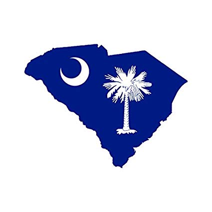 the state of south carolina with a daggum flag