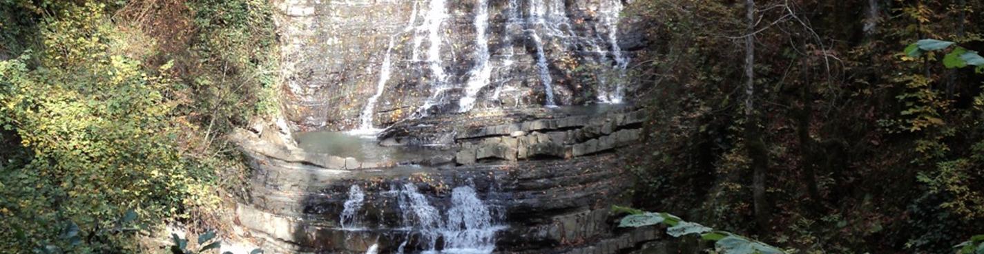 Змейковские водопады + Аквариум на мацесте