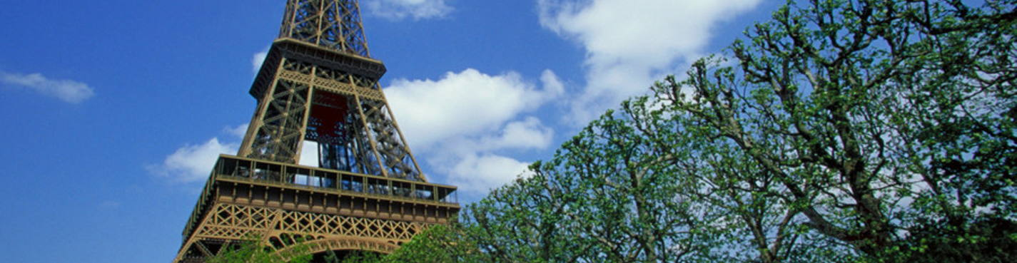 Обзорная экскурсия по Парижу на автомобиле с водителем и гидом
