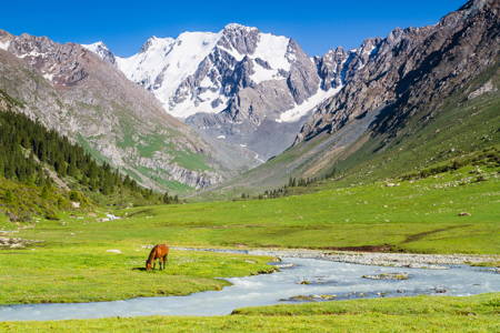 Kyrgyzstan Adventure for 2 person(10 days, 4* hotel)