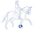 drawing dressage horse with rider CURAFYT
